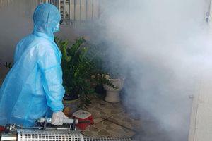 Hóa chất diệt muỗi độc hại ra sao?