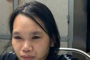 Nữ nghi phạm sát hại chủ thầu xây dựng ở Hải Dương khai gì?