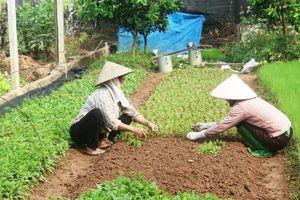 Dân vận khéo góp sức xây dựng nông thôn mới