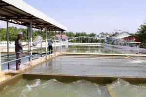 Dự án Nhà máy nước sạch Hòa Liên - Đà Nẵng: Có hay không sự dàn xếp trong quá trình đấu thầu?