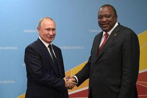 Giấc mơ châu Phi của Tổng thống Putin: Bước đệm để Nga vươn tầm ảnh hưởng?