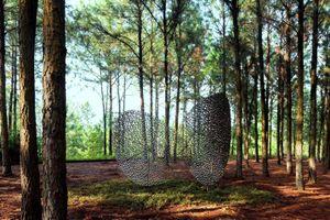 Triển lãm Art in the forest 2019: Nửa thập kỉ kiến tạo nghệ thuật