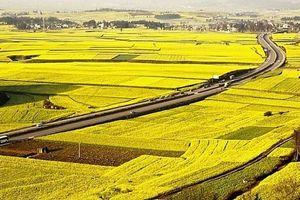 Bộ Tài chính xin miễn, giảm 7.500 tỷ đồng thuế sử dụng đất nông nghiệp cho nông dân