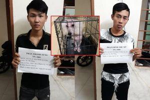 Trộm chó rồi 'lập mưu' đòi tiền chuộc, 2 cẩu tặc bị chủ chó đánh bầm mặt