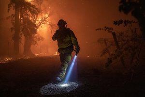 Cháy rừng California: 185.000 người sơ tán