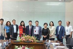 Công đoàn Điện lực Việt - Hàn hợp tác, trao đổi kinh nghiệm