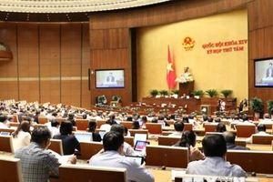 Kỳ họp thứ 8, Quốc hội khóa XIV: Thảo luận tại tổ ba dự án Luật