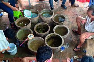 Đà Nẵng: Triệt xóa ổ đá cá ăn tiền trong khu dân cư
