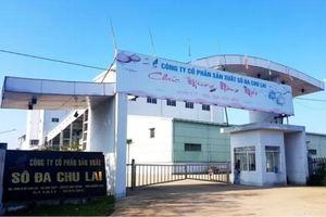 Quảng Nam: Công ty Sô đa Chu Lai nợ thuế hơn 70,7 tỷ đồng