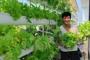 Khán giả trầm trồ khi nhìn 'khu vườn rau quả' trên sân thượng biệt thự nhà Lý Hải - Minh Hà