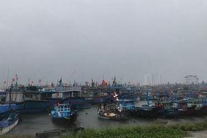 Bão số 5: Học sinh ở Quảng Ngãi được nghỉ học