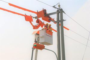 Ngành điện khuyến cáo người dân ứng phó bão số 5