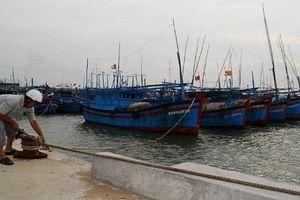 Các tỉnh Nam Trung Bộ khẩn trương ứng phó bão số 5