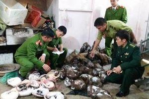 Nhức nhối buôn bán động vật hoang dã bất hợp pháp