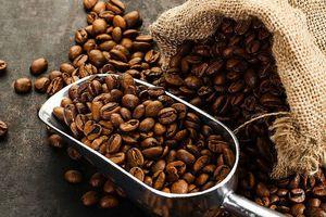 Giá cà phê hôm nay 30/10: Tăng phi mã lên gần 32.000 đồng/kg