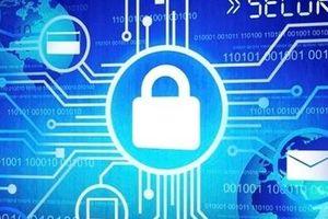 Tìm hiểu Luật An ninh mạng: Trách nhiệm của cơ quan, tổ chức, cá nhân