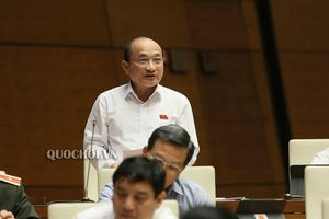 Đại biểu Quốc hội: 'Đừng để dân chịu hậu quả vì sự tắc trách của một bộ phận cán bộ'