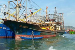 Triển khai NĐ 67: Ngư dân giỏi trở thành con nợ