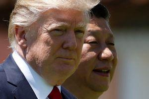 APEC bị hủy, cuộc gặp Trump - Tập có thể diễn ra ở Macao