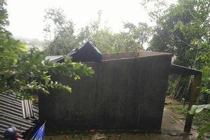 Bão số 5 khiến hàng trăm ngôi nhà ở Quảng Ngãi hư hỏng, 4 người bị thương