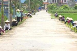 Thái Bình huy động các nguồn lực xây dựng nông thôn mới