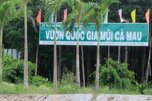 Kỷ luật nguyên Giám đốc Vườn Quốc gia Mũi Cà Mau