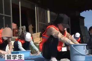 Truyền hình Nhật đưa tin du học Việt tham gia cứu trợ sau siêu bão