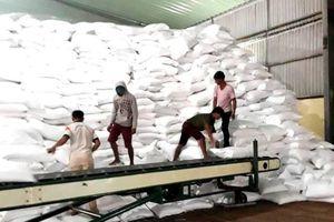 Xuất cấp gần 1.500 tấn gạo hỗ trợ học sinh hai tỉnh Đắk Lắk và Đắk Nông