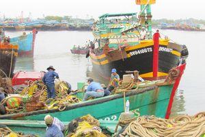 Cấp bách tái cơ cấu đánh bắt thủy sản