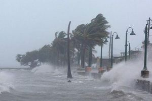 Ngày 6/11, khả năng xuất hiện bão trên Biển Đông, ảnh hưởng đến miền Trung