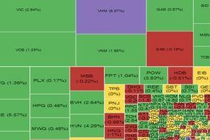 Thị trường chứng khoán chiều 01/11: VHM tăng trần, kéo VN-Index tăng gần 17 điểm