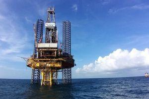 Vietsovpetro đón dòng dầu thương mại đầu tiên từ giàn BK-20 mỏ Bạch Hổ