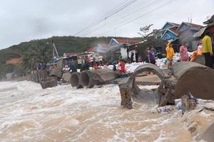 Các tỉnh Nam Trung Bộ thiệt hại nặng bởi bão số 5