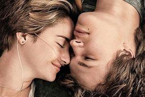 5 bộ phim tình cảm lấy nước mắt của khán giả