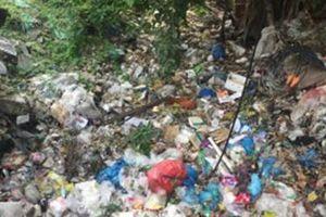 Bao giờ mới hết cảnh vứt rác bừa bãi?
