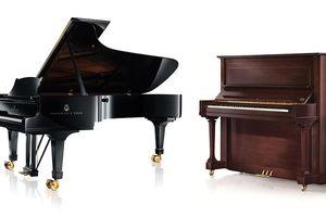 Piano: Dương cầm hay cương cầm? Tam thập lục: Dương cầm hay đàn bướm?