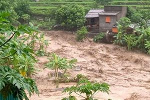 Chủ động ứng phó vùng áp thấp, mưa lũ ở miền trung