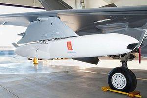 F-35 kết hợp tên lửa chống hạm thế hệ 5: Mối đe dọa chết chóc?