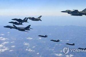 Mỹ, Hàn Quốc có thể hủy cuộc tập trận chung Vigilant Ace