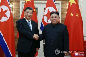 Nhà lãnh đạo Trung Quốc Tập Cận Bình nói gì về mối quan hệ với Triều Tiên?