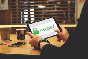 Cách chặn truy cập trang web trong bất kỳ trình duyệt nào trên iOS 13 hoặc iPadOS