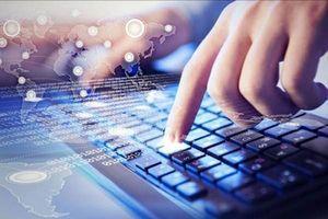 Hơn 2 triệu địa chỉ IP của Việt Nam nằm trong mạng máy tính ma