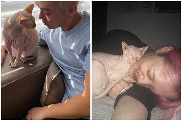 Sự thật về việc Yoo Ah In nuôi mèo cưng của Sulli