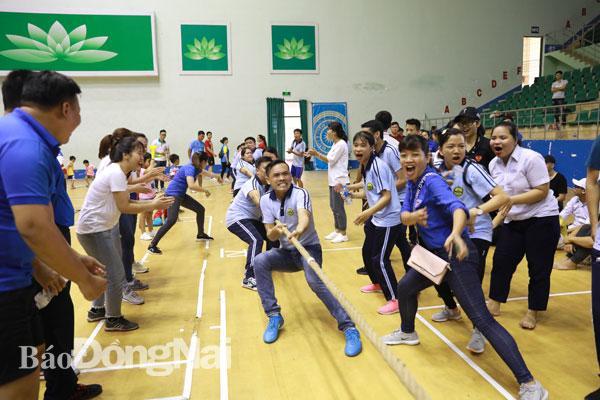 Hơn 300 VĐV, CĐV tham dự Hội thao Đoàn khối các cơ quan tỉnh 2019