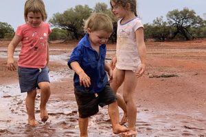 Nông dân Australia ăn mừng cơn mưa đầu tiên sau đợt hạn hán