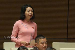 Đại biểu Quốc hội phân tích tình trạng 'không làm, không quyết, không dám tham mưu' vì sợ sai phạm