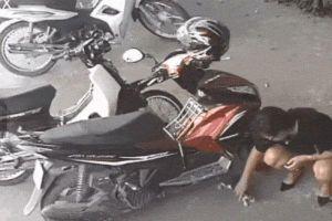 Clip: Ngỡ ngàng nhìn cô gái túm cổ con mèo nhét vào 'chỗ hiểm' rồi... chuồn mất!