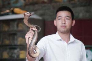 Đặc sản rắn Lệ Mật của Hà Nội lên sóng CNN