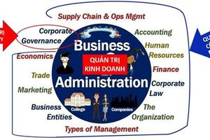 Hiểu thế nào về quản trị kinh doanh, quản trị công ty và quản lý công ty?