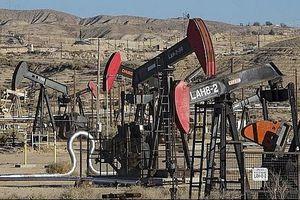 Giá dầu thô tăng mạnh sau tín hiệu tích cực
